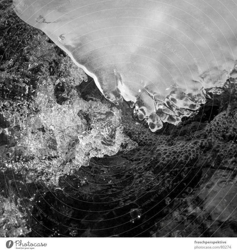 kaltes wasser Wildbach Eisscholle Eisbaden Packeis Wasserwirbel Winter frieren Bach Schweiz schwarz Grauwert nass Schnellzug Fluss Schnee kräuseln