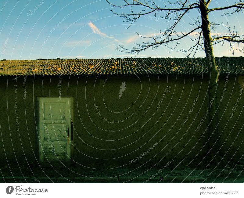 Die Tür zur anderen Seite alt Himmel Baum blau Winter dunkel Wand Mauer Wege & Pfade Gebäude Tür Erfolg geschlossen Dach Baustelle verfallen