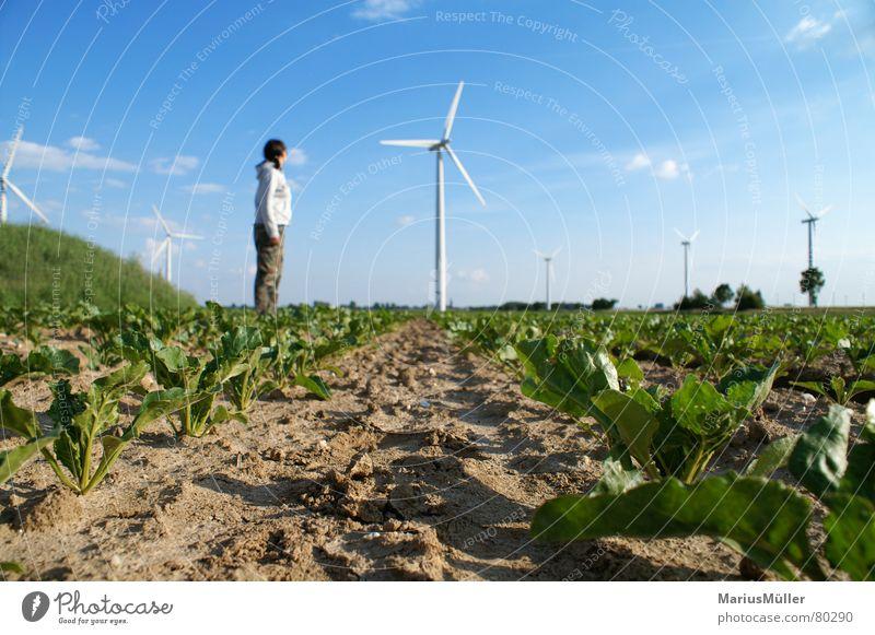 Laura und das Windrad Natur Himmel grün blau Sommer Freude Einsamkeit Frühling Feld klein groß Erde Windkraftanlage toben Größenvergleich