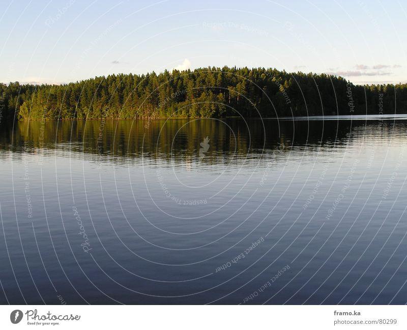 stilles wasser ... Wasser Baum Sommer ruhig Wald See Stimmung Küste