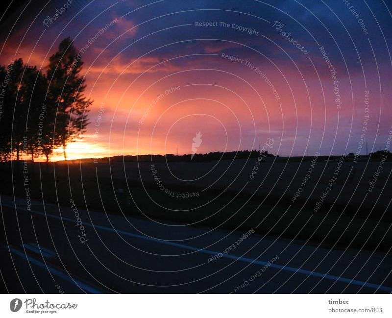 Sonnenuntergang Himmel Baum blau rot dunkel Bewegung orange Autobahn Frankreich Autofahren