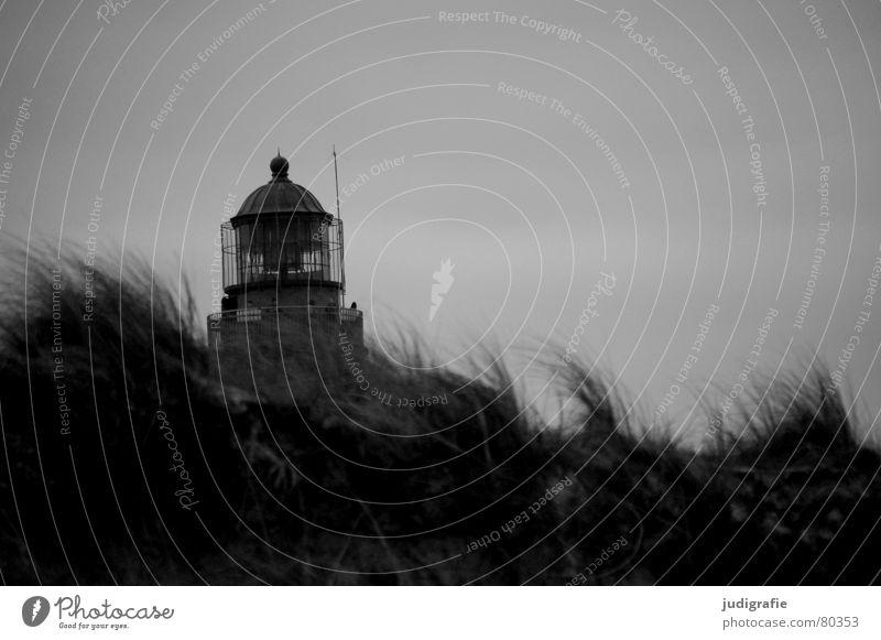Darßer Ort Navigation Seezeichen Weststrand Luft Leuchtturm Meer Strand Küste Gras Orientierung Licht salzig Ferien & Urlaub & Reisen schwarz