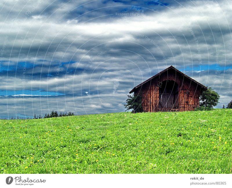 Almöhi´s Garage grün blau Sommer Wolken dunkel Gras Berge u. Gebirge Holz Tür offen Schutz Alpen Tor Hütte Weide Scheune