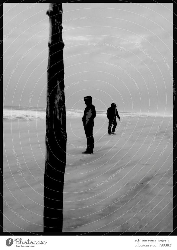 stürmische zeiten See Holz Sturm Meer ruhig Wind Leidenschaft Wolken Schwarzweißfoto Winter Schiffsplanken Mensch Himmel Schnee
