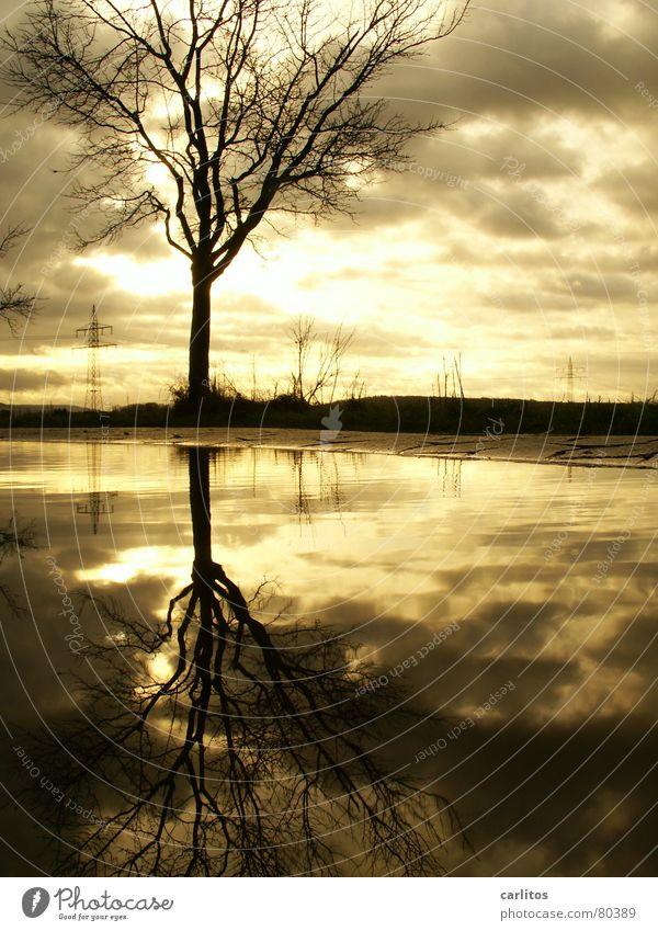 Altes Thema, ich geb's zu .. Baum Pfütze Reflexion & Spiegelung Wolken dramatisch Wind Leidenschaft Elektrizität Strommast Hochspannungsleitung Horizont Mitte