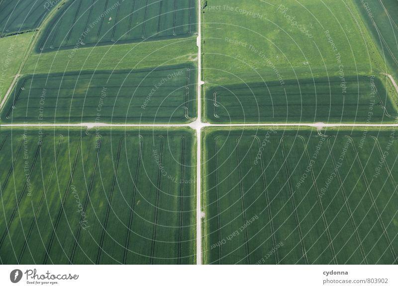 Im Mittelpunkt Natur Sommer ruhig Landschaft Ferne Umwelt Straße Bewegung Wege & Pfade Freiheit Ordnung Feld Idylle ästhetisch einzigartig planen