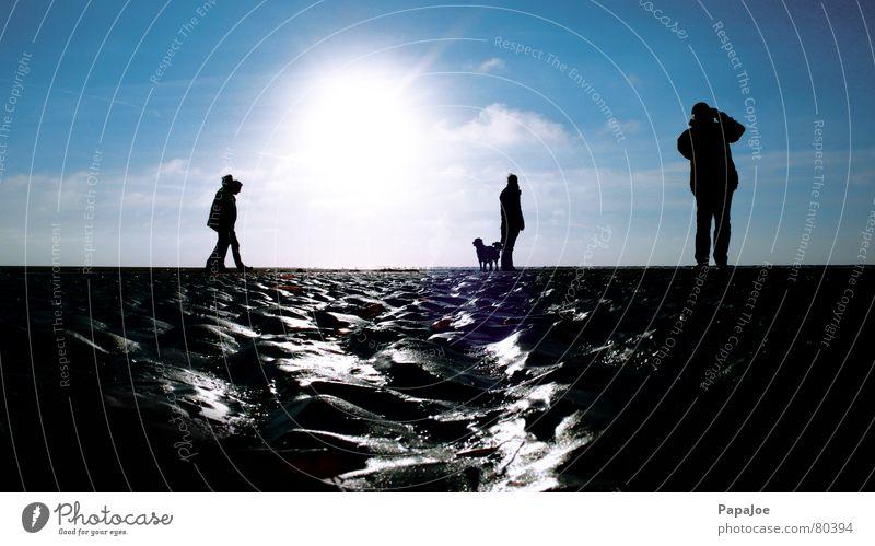 Strandleben Golden Retriever Hund Frau Mann Mensch Fotografieren kalt nass Wolken Gegenlicht Tier Meer Dezember Horizont zyan Silhouette feucht Eis