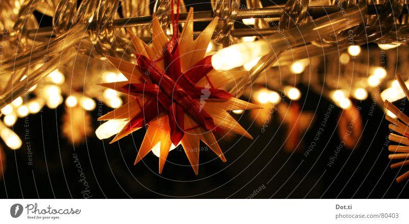 just in time Farbfoto Innenaufnahme Detailaufnahme Menschenleer Textfreiraum unten Abend Kunstlicht Licht Winter Häusliches Leben Dekoration & Verzierung Raum