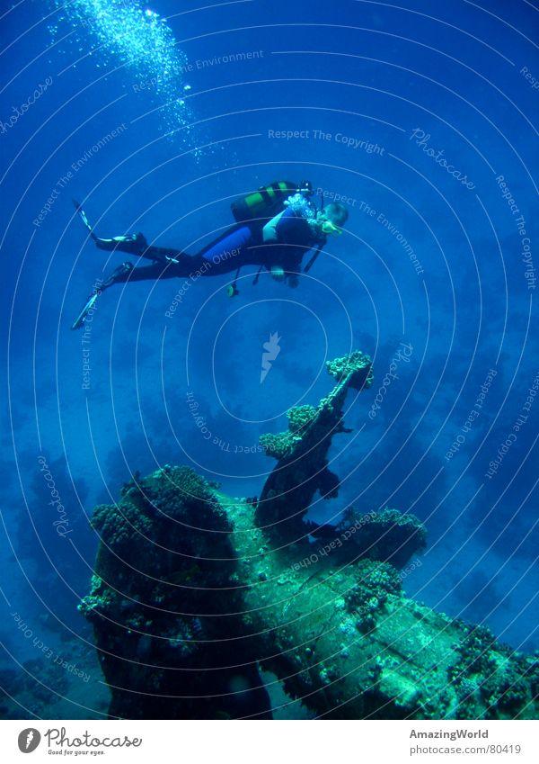 Recall the past Unterwasseraufnahme Schiffswrack Wassersport Unendlichkeit Taucher tauchen Meer Ägypten Vergangenheit Freiheit historisch salem express blau