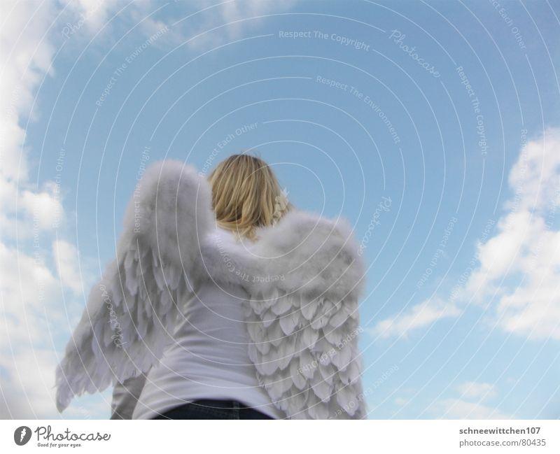 himmel auf erden Wolken Schutz Frieden Spannweite beschirmen Engel blau Himmel Flügel Mensch Paradies