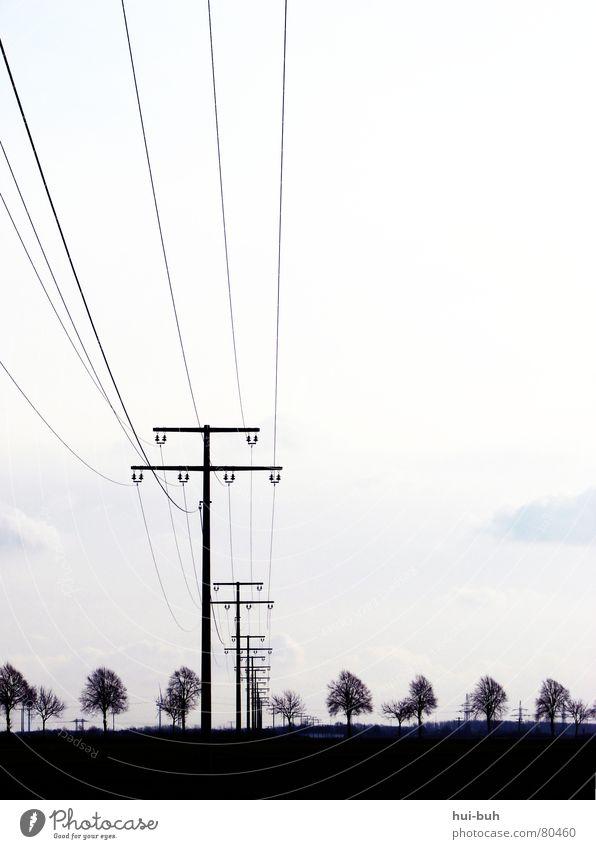 Schwarzer Umweltstrom Weg Himmel Natur Baum schwarz Umwelt Freiheit Erde Horizont Linie Energiewirtschaft Elektrizität trist Kabel streichen Gemälde Strommast