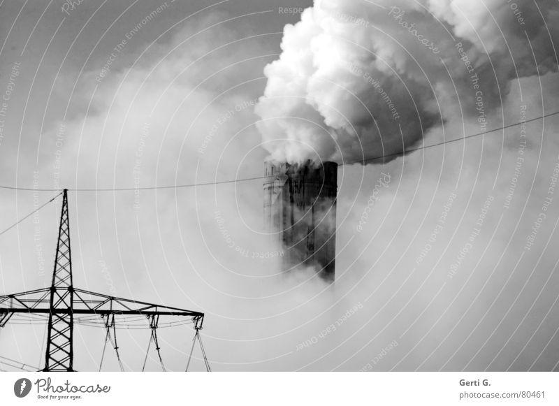 Hans Dampf gehen Nebel Umwelt Industrie Energiewirtschaft Elektrizität Zukunft Technik & Technologie Fabrik Wissenschaften Rauch Umweltverschmutzung Wasserdampf Stromkraftwerke Steckdose Hochspannungsleitung