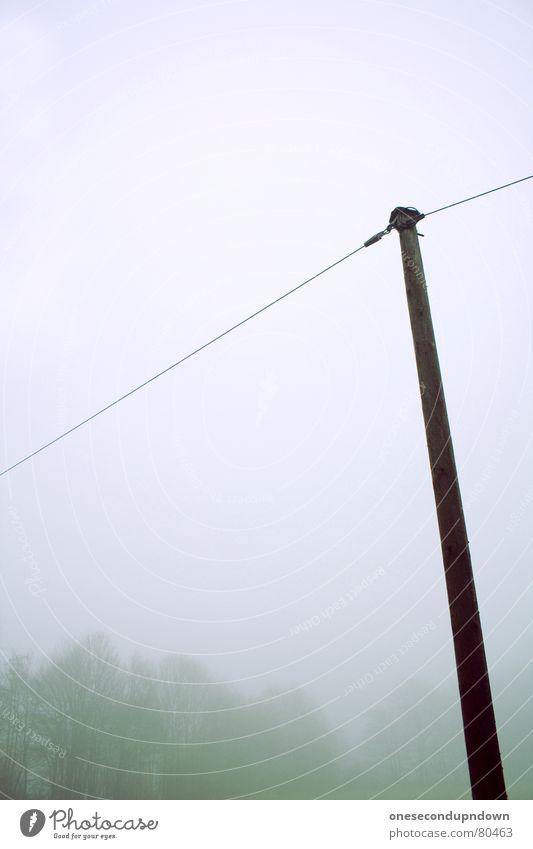 Mast dunkel Nebel gruselig leer Baum Winter kalt grau Dezember Menschenleer abgelegen fremd außergewöhnlich trist herzlos Schleier geisterhaft Eis unheimlich