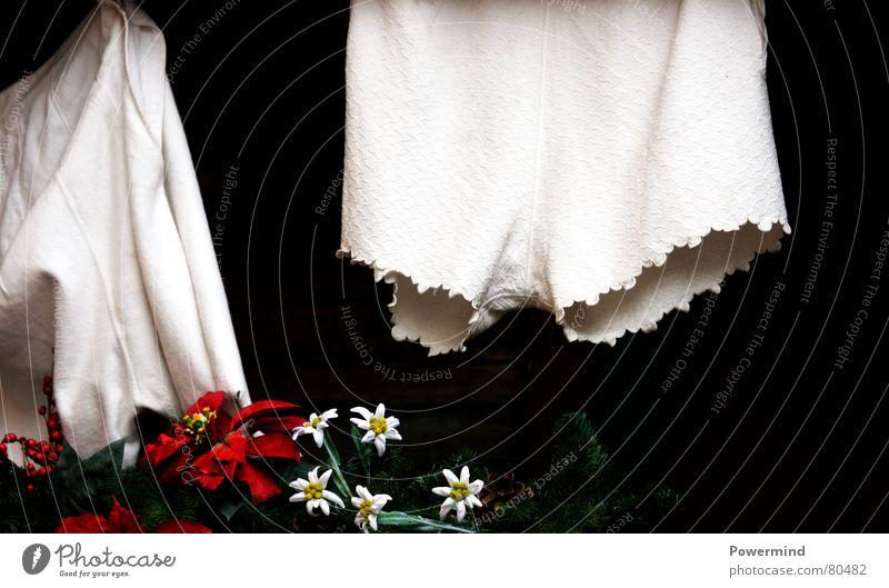 Heidi`s Schlüpfer weiß Nostalgie bleich Wäsche waschen Wäsche Unterwäsche trocknen Unterhose aufhängen Tracht Wäscheleine Frauenunterhose Baumwolle Waschtag