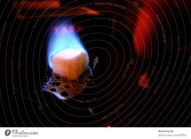 Ritual I Absinth grün Getränk Kräuter & Gewürze Makroaufnahme Nahaufnahme Alkohol Fee Beginn blau Flamme