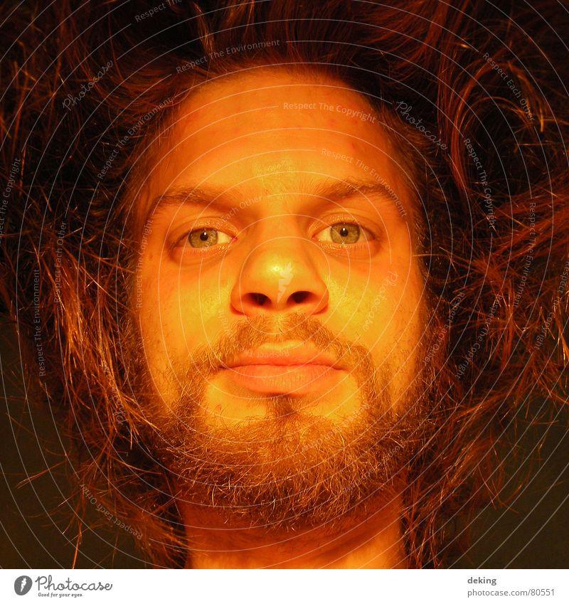 Gesicht Mann schön rot Auge gelb Haare & Frisuren Mund Wärme blond maskulin Nase Lippen Physik Spitze Bart