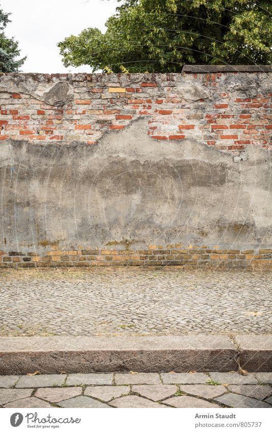 alte Mauer in Kreuzberg Himmel Schönes Wetter Baum Berlin Menschenleer Architektur Wand Bürgersteig Backstein Straße Kopfsteinpflaster authentisch dreckig