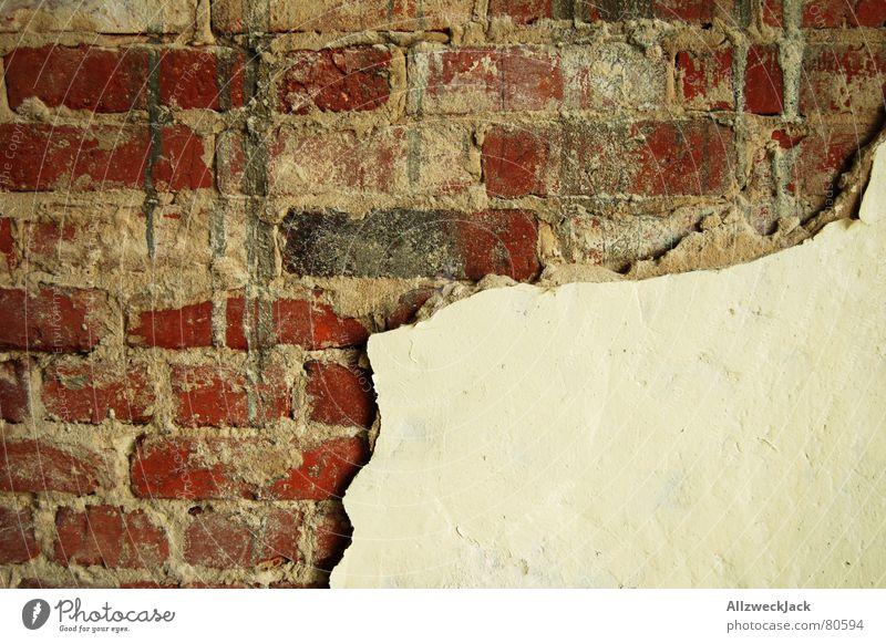 Putzfimmel ziegelrot Wand Mauer Backstein Verfall verfallen schädlich Trennwand verfaulen platzen Riss verrotten herunterkommen springen Lehm Vergänglichkeit