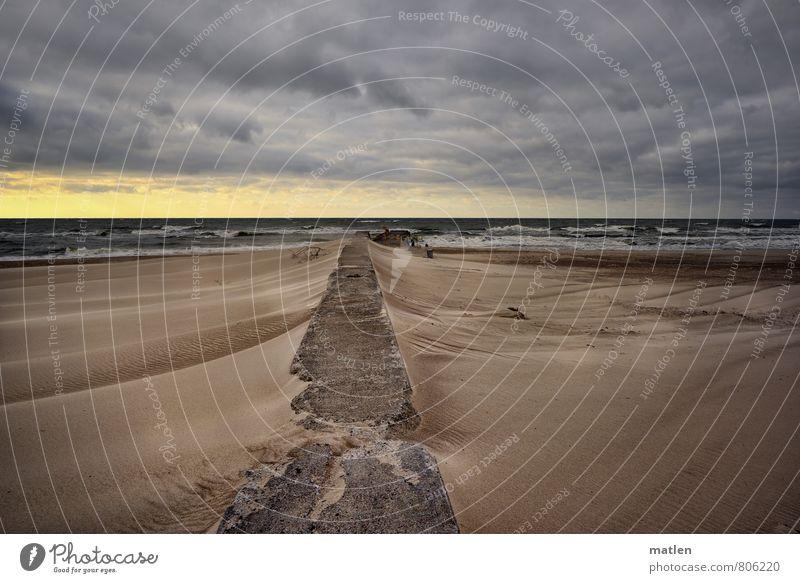 vom Winde verweht Natur Landschaft Sand Luft Wasser Himmel Wolken Horizont Sonnenlicht Frühling Wetter Schönes Wetter schlechtes Wetter Sturm Wellen Küste