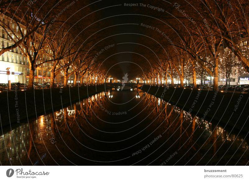 kastanienallee bis 1848 Queue Nacht Reflexion & Spiegelung Baum Winter Verkehrswege Langzeitbelichtung Wasser kö königsallee Düsseldorf