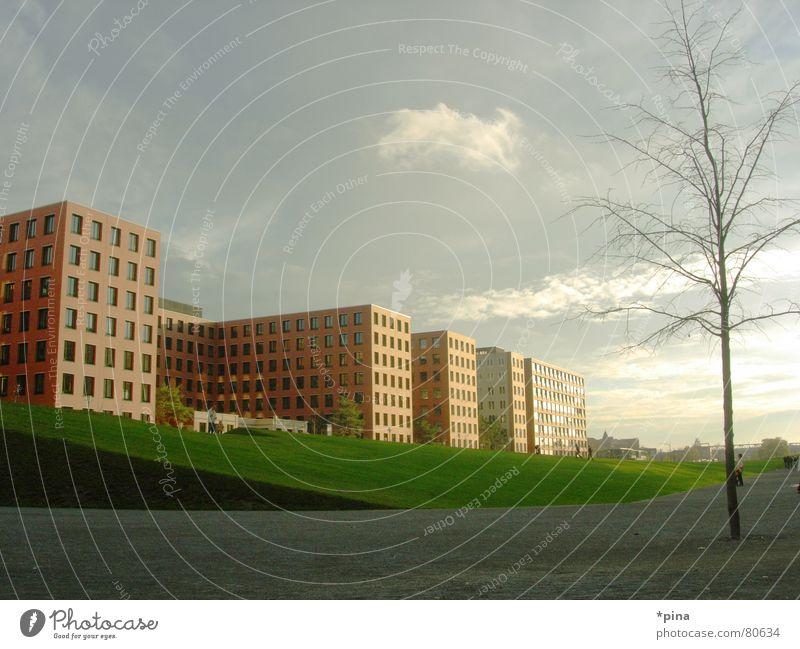 Futurama_2 hell einheitlich gleich Hochhaus Block Gebäude Fenster Quadrat eckig Baum Herbst Wiese gepflegt Macht Ordnung Bauwerk regelmässig Rechteck abstrakt