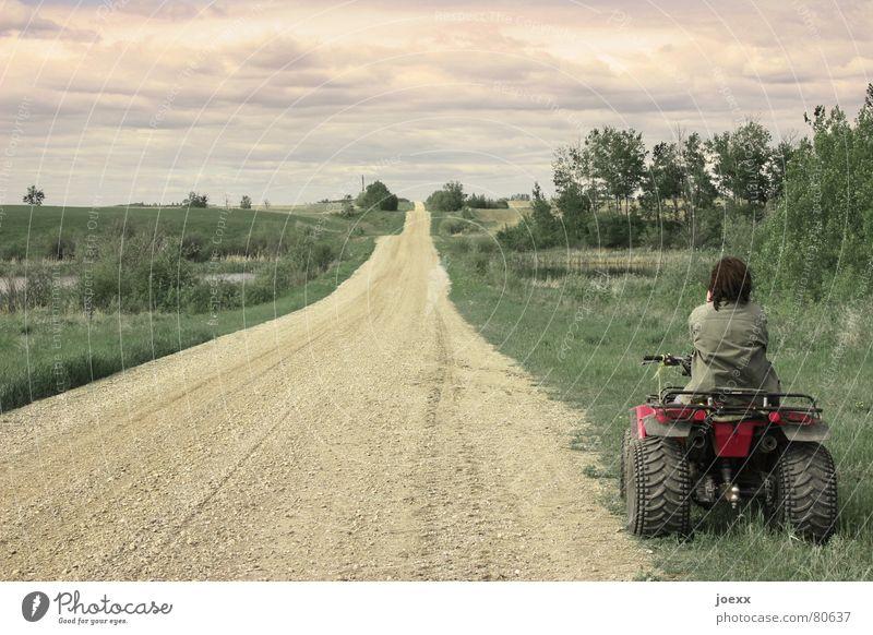 Weg mit dem Quad-Rad Buggy (Motorrad) Lebenslauf Wolken schlechtes Wetter Silhouette Auspuff Pause Denken Frau grün beige Baum Sträucher Gelände Ferne flüchten