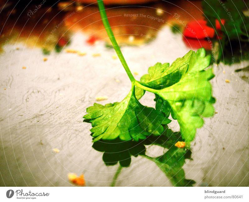Der Rest vergangen Petersilie Tablett grün rot satt Kräuter & Gewürze lecker Mittagessen Abendessen Gier Büffet Appetit & Hunger Jetset Vegetarische Ernährung