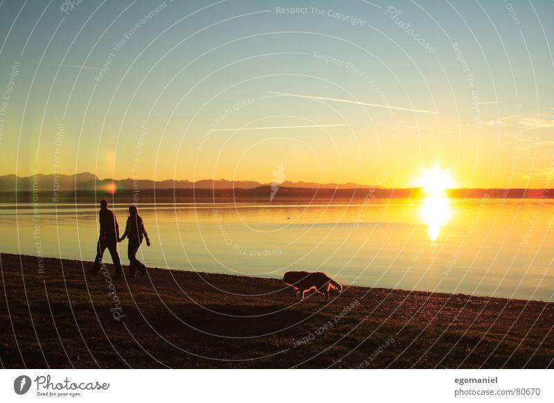 Uferspaziergang Mensch Natur Wasser Himmel Sonne Wolken Ferne Berge u. Gebirge Hund Familie & Verwandtschaft See Küste Horizont Spaziergang Starnberger See