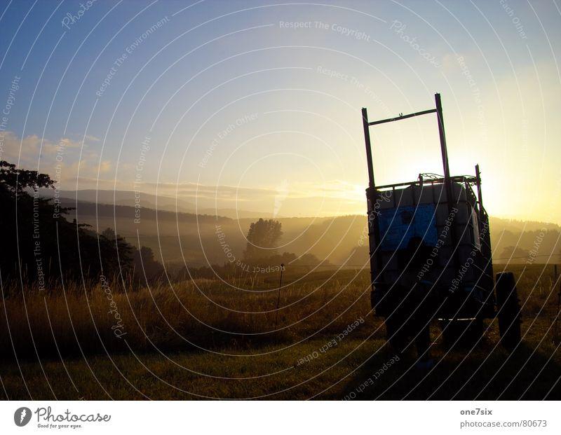 morgenstund hat gold im mund Morgen Ferne Landwirtschaft Nebel Baum Wiese Sonnenaufgang Feld Hügel Wolken Gegenlicht Frühling Himmel Weide wide morning glory