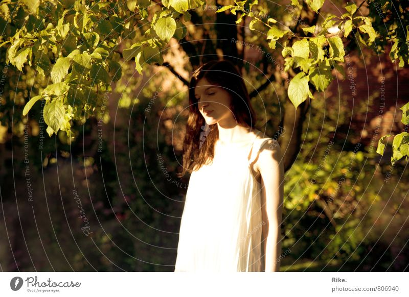 Verschwinden. Mensch feminin Junge Frau Jugendliche 1 18-30 Jahre Erwachsene Natur Sommer Baum Blatt Garten Park brünett langhaarig träumen Traurigkeit schön