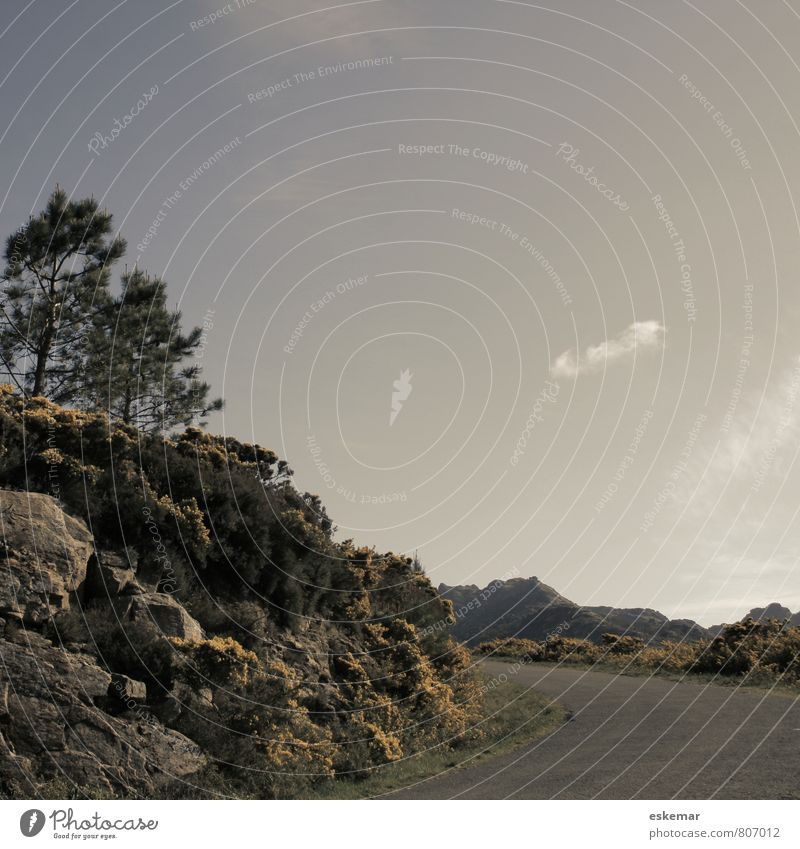 der Weg Ferien & Urlaub & Reisen Natur Landschaft Hügel Felsen Berge u. Gebirge Galicia Galizien Spanien Verkehr Verkehrswege Straßenverkehr Wege & Pfade