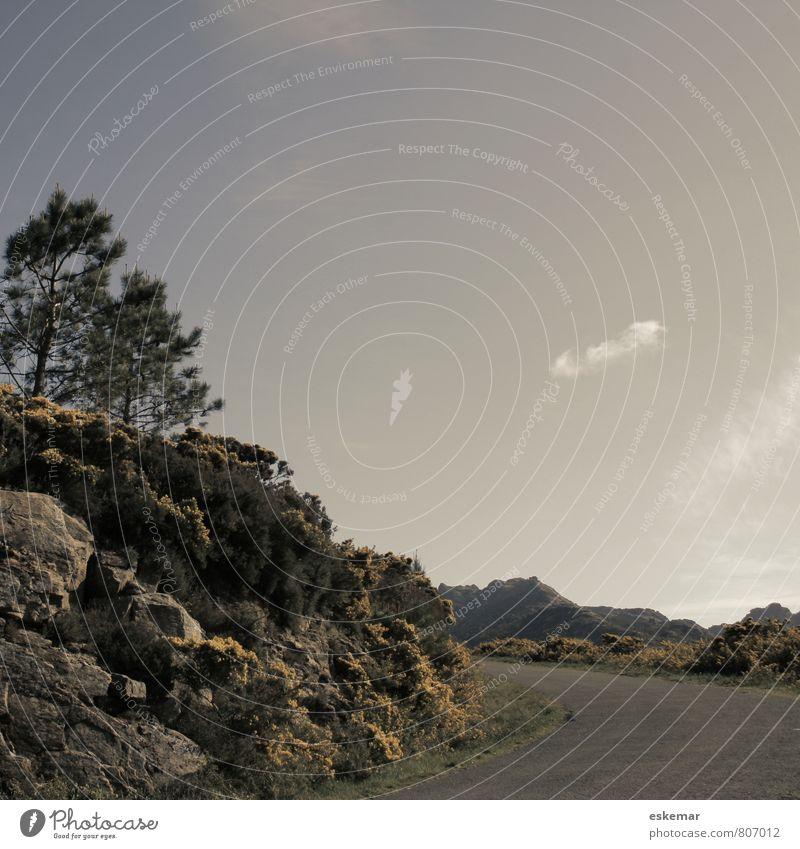 der Weg Natur Ferien & Urlaub & Reisen Landschaft Einsamkeit Berge u. Gebirge Straße Wege & Pfade Felsen Verkehr authentisch retro Hügel fahren Spanien