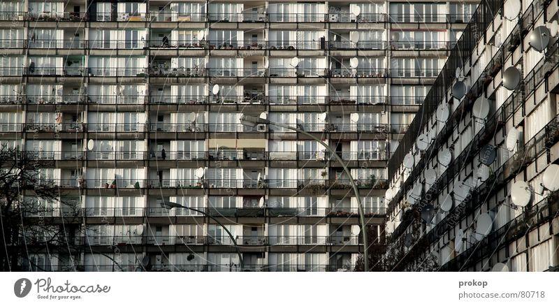 Massentierhaltung Legebatterie Satellit Plattenbau Hochhaus Stadt Wohnung Brennpunkt Sozialer Brennpunkt Gehege anonym Häusliches Leben Ghetto modern Angst