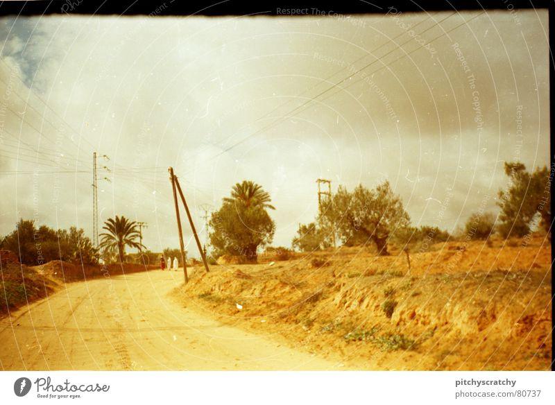 Sraße in Tunesien gelb weiß Dorf Palme Einsamkeit Wege & Pfade way Straße street Scan scratch white Himmel Wüste desert
