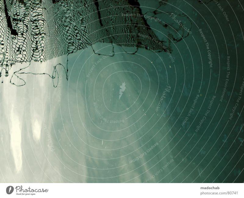 ÖLMALEREI blau Wasser grün Meer Umwelt kalt Herbst See Wasserfahrzeug Lebensmittel dreckig nass Ernährung Elektrizität Fisch Netzwerk