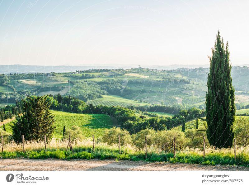 Himmel Natur Ferien & Urlaub & Reisen grün Sommer Baum Landschaft Haus Straße Wiese Idylle Europa Aussicht Kultur Italien Hügel