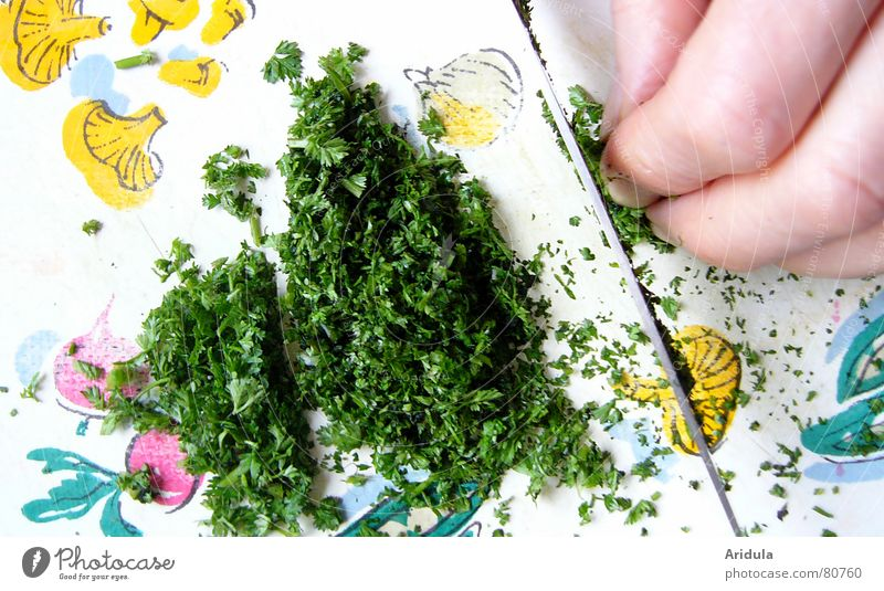 küche_02 Hand klein Lebensmittel Ernährung Finger Kochen & Garen & Backen Küche Gemüse Gastronomie Kräuter & Gewürze Messer Schneidebrett geschnitten Geschmackssinn selbstgemacht Intuition