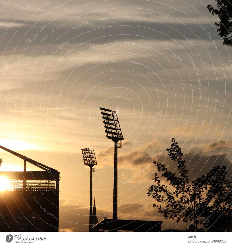 Götterdämmerung Sport Ballsport Tribüne Fußball Sportstätten Fußballplatz Stadion Millerntor Flutlicht Himmel Wolken Baum blau schwarz Farbfoto Gedeckte Farben