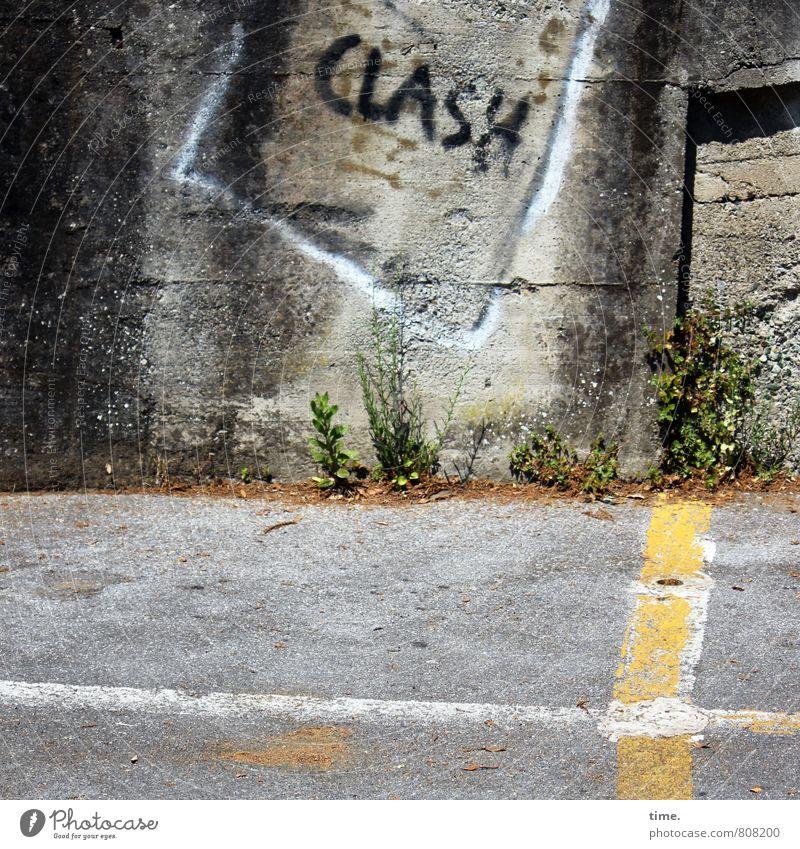auä Pflanze Mauer Wand Verkehr Verkehrswege Straße clash Stein Beton Zeichen Schriftzeichen Schilder & Markierungen Hinweisschild Warnschild Verkehrszeichen