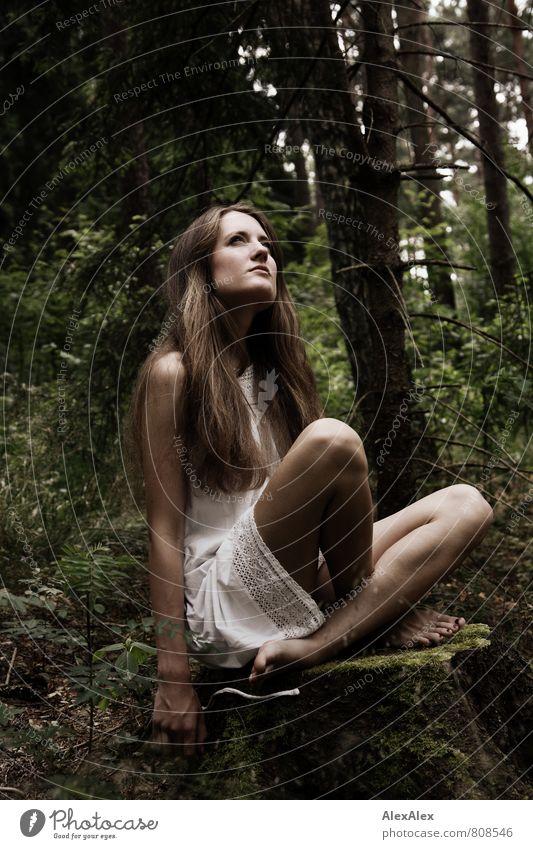 Elfe Abenteuer Junge Frau Jugendliche Haare & Frisuren Gesicht Beine Fuß 18-30 Jahre Erwachsene Natur Baum Sträucher Wald Barfuß brünett langhaarig beobachten
