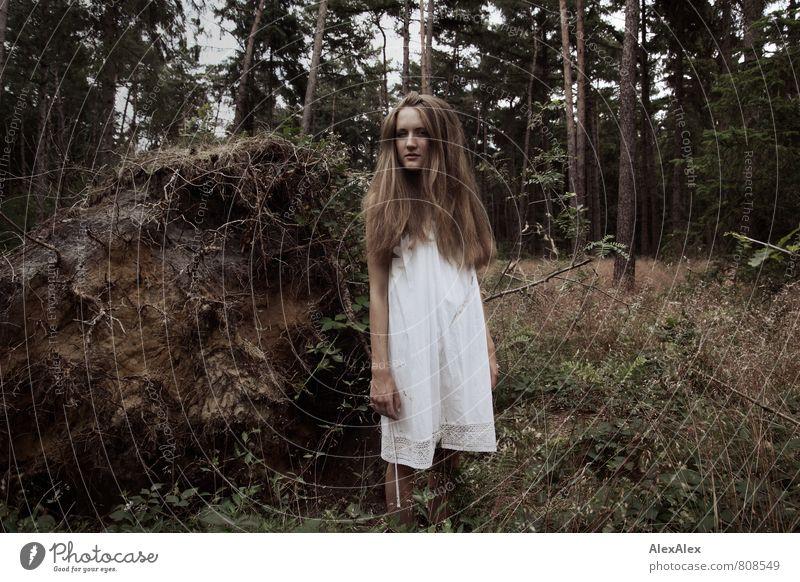des Försters schöne Tochter Abenteuer Junge Frau Jugendliche 18-30 Jahre Erwachsene Natur Landschaft Baum Gras Sträucher Baumwurzel Wald Waldlichtung Kleid