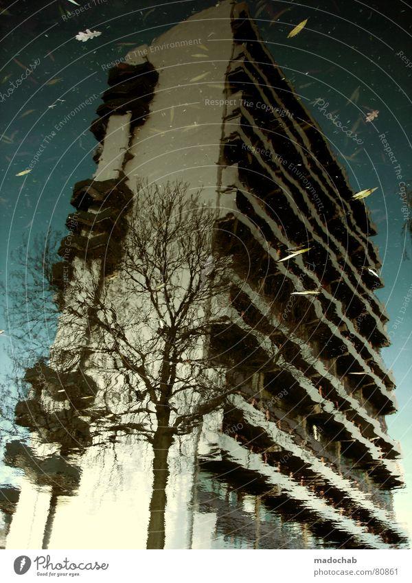 MAY I INTRODUCE... Pfütze wirklich Nebel nass Herbst Haus Hochhaus Gebäude Material Fenster live Block Beton Etage trist dunkel Leidenschaft Spiegel Vermieter