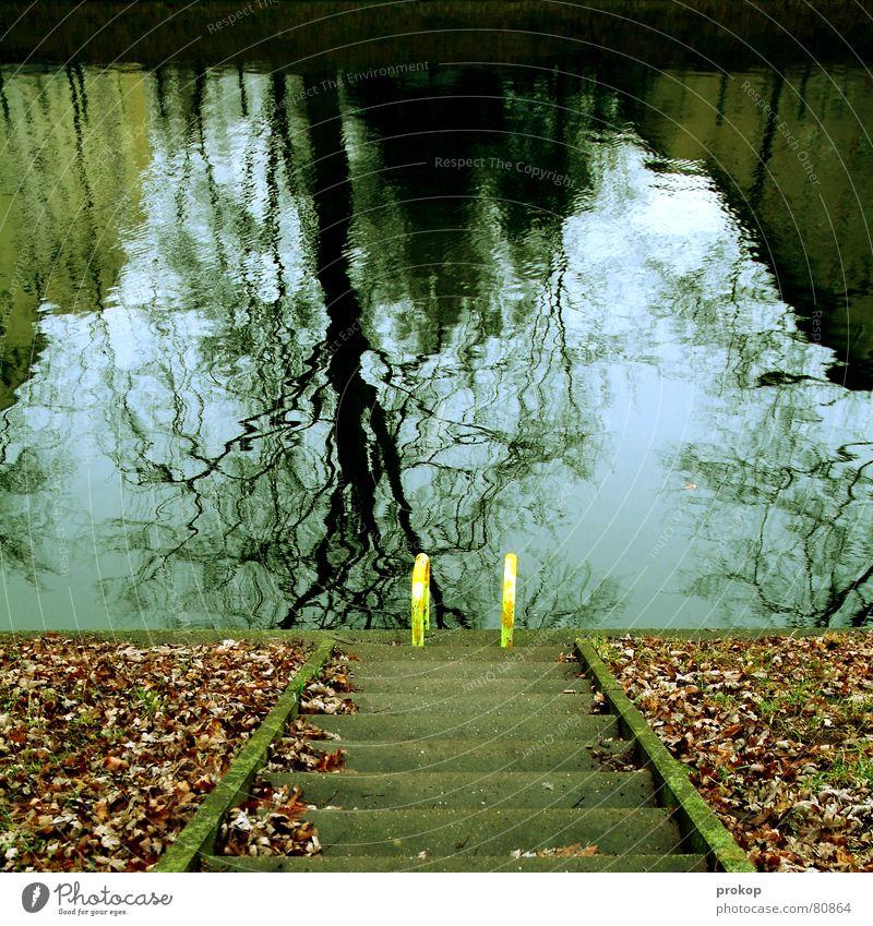 Poolparty Wasser Blatt Herbst kalt Treppe frisch Herbstlaub Leiter abwärts herbstlich Spiegelbild Verzerrung Einstieg (Leiter ins Wasser) Freibad Neukölln Wasserspiegelung