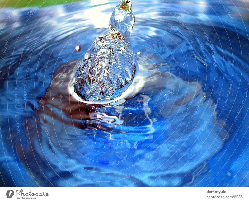 geschosswölbung Wasser blau Baumkrone spritzen Verschluss