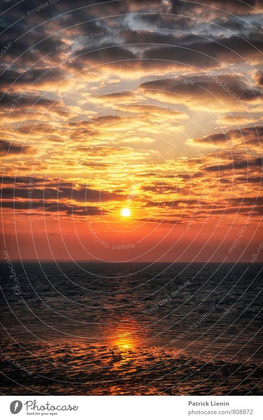 Kitsch am Morgen Natur Sommer Sonne Meer Erholung rot Landschaft ruhig Strand Ferne Umwelt Freiheit Stimmung Wetter Wellen Zufriedenheit