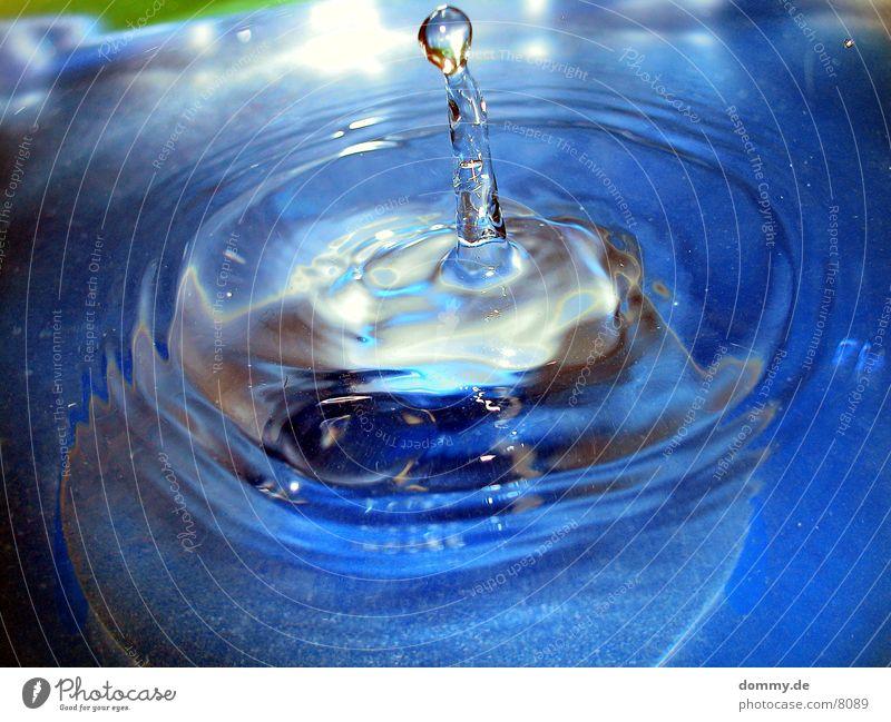 Säule Wasser blau Baumkrone spritzen Makroaufnahme Verschluss