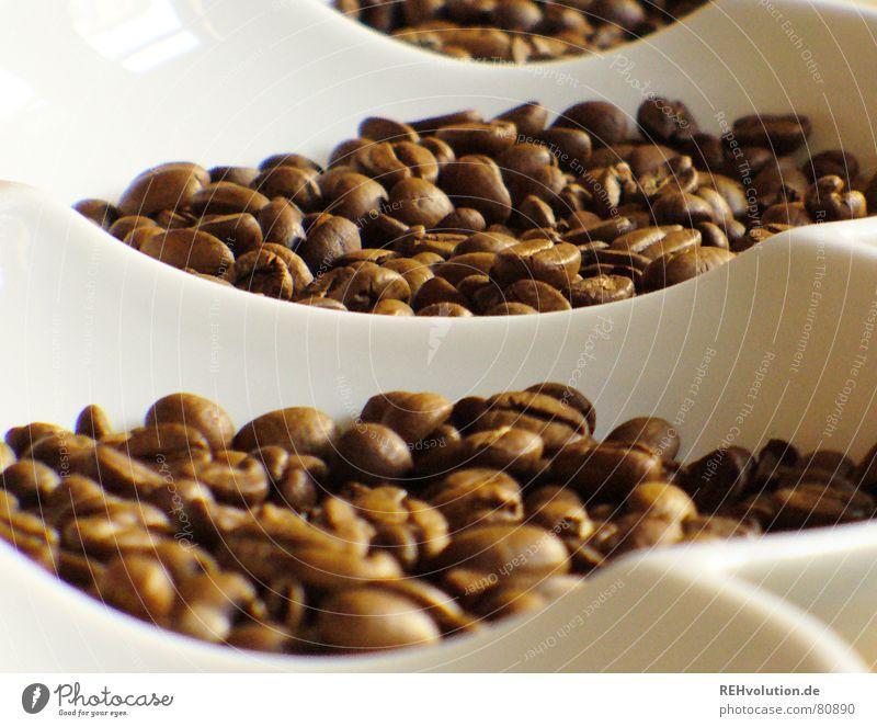 kalter kaffee 1 Wärme braun Kaffee Physik lecker Schalen & Schüsseln wach Bohnen Kaffeebohnen Koffein