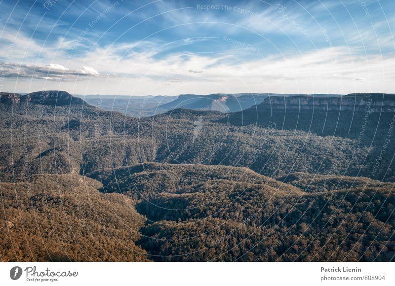 Blue Mountains II Himmel Natur Ferien & Urlaub & Reisen Pflanze Sommer Einsamkeit Erholung Landschaft Wolken Ferne Wald Umwelt Berge u. Gebirge Freiheit Wetter