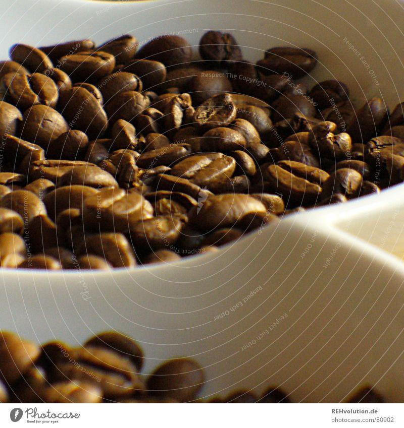 kalter kaffee 2 Wärme braun Kaffee Physik Café lecker Schalen & Schüsseln wach Bohnen Kaffeebohnen Koffein