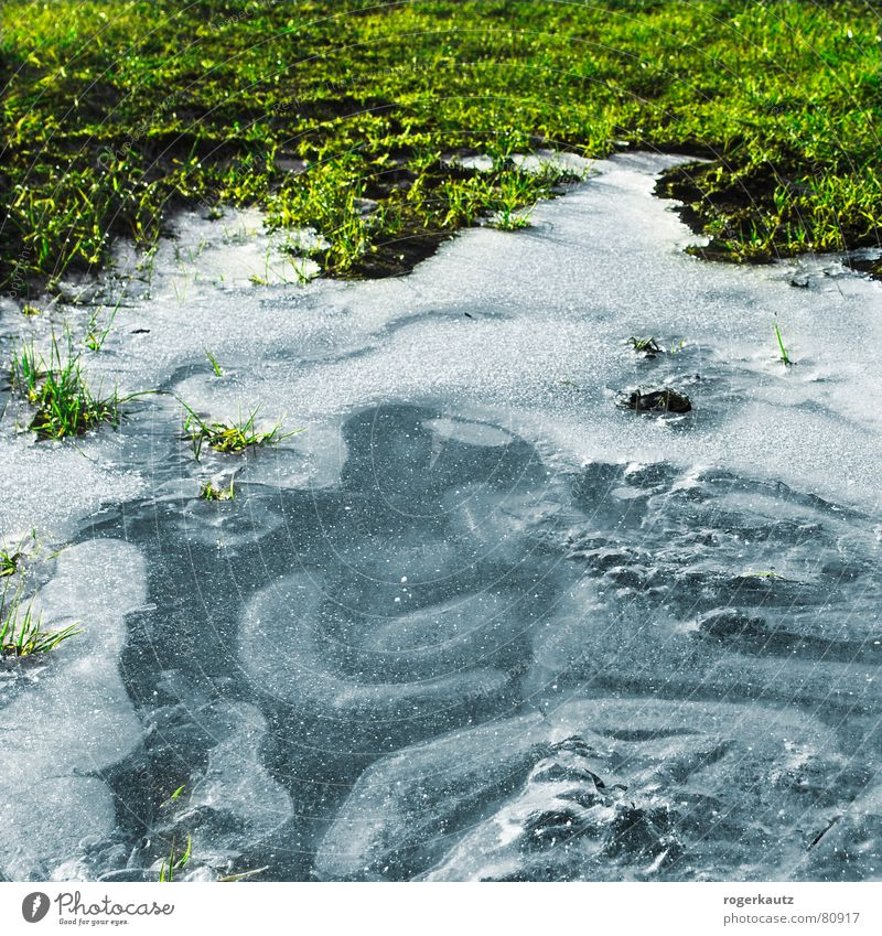 Eis Winter kalt Wiese Feld Frost gefroren Pfütze Alb